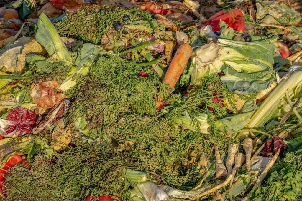 les déchets valorisables par methanisation